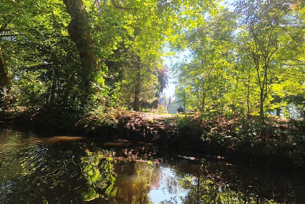 Park kasteel Stapelen